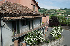 Village house  for sale in Piemonte - Charming Village House with beautiful vineyard views