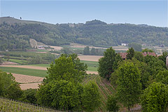 Italian Farmhouse with vineyards for sale in Piemonte - Views