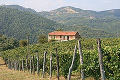 Rustic Italian farmhouse for sale in Piemonte Italy -