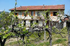 Rustic Italian farmhouse for sale in Piemonte Italy - Rustic Italian Farmhouse