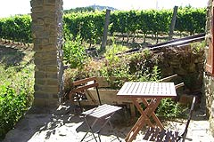 Rustic Italian farmhouse for sale in Piemonte Italy - Terrace area