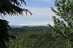 Italian Villa for sale in Piemonte - Mountain views