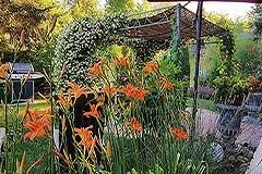 Italian farmhouse for sale in Italy Piemonte - Gardens