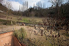 Traditional Italian farmhouse for sale in Piemonte - Garden area to the side