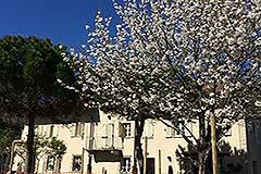 Casale in vendita in Piemonte - Front view