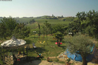 Luxury Country House for sale in the Piemonte region of Italy. - View of Italian vineyards