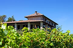 Luxury Property for sale in Piemonte Italy - Tranquil position