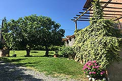 Restored Character House with Barn for sale in Piemonte - Garden area