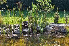 Luxury Stone Property for sale in Piemonte. - Garden pond