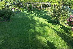 Italian Villa for sale in Piemonte Italy - Gardens