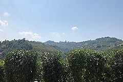 Apartment for sale in The  Langhe Hills - Views