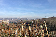 Dorfhaus zum Verkauf im Piemont - Views