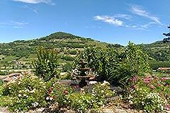 Lussuosa casa in vendita in Piemonte - Gardens
