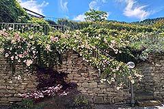 Lussuosa casa in vendita in Piemonte - Langhe stone wall