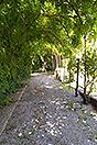 Lussuosa casa in vendita in Piemonte - Grounds