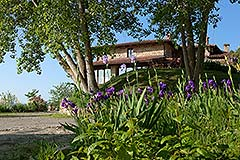 Country Estate for sale in Piemonte Italy - Rural location