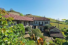 Country Estate with Vineyard and Swimming Pool - Restored Langhe Stone farmhouse comprising of 2 houses, 3 apartments, swimming pool and a vineyard.
