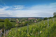 Country House for sale in the Langhe region of Piemonte - Surrounding views