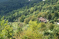 Organic Farm for sale Piemonte - View of property