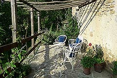 Organic Farm for sale Piemonte - Patio