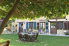 Organic Farm for sale Piemonte - Garden area
