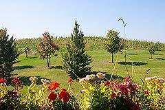 Luxusimmobilie zum Verkauf im Piemont. - Well maintained gardens