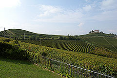 Character Country Home for sale in the Langhe Piemonte - Vineyard views