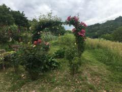 Landhaus zum Verkauf im Piemont - Land