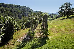 Luxury Country home for sale in Piemonte - Land