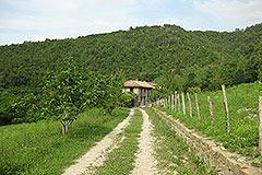 Restored Langhe Stone farmhouse for sale in Piemonte - Private location