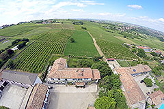 Farmhouse for sale in Piemonte Italy - Vineyard views