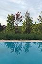 Tenuta di campagna in vendita in Piemonte - Pool area