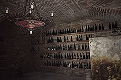Village house for sale in Piemonte - Cantina