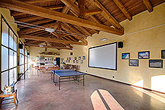 Country Estate  for sale in Piemonte Italy - Games area