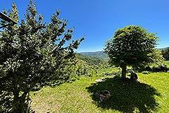Cascina in pietra in vendita in Piemonte - Views