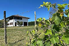 Country House for sale in Piemonte - Country House for sale in Piemonte