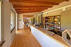 Luxury Restored Stone House for sale in Piemonte - Luxury kitchen